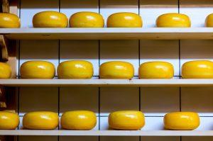 Gouda Cheese Netherlands